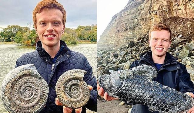 Британец нашел на пляже древнее существо, возраст которого может составлять 185 миллионов лет всячина