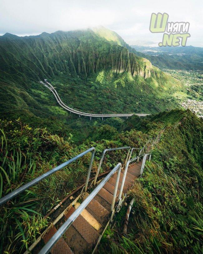 Все бросить и уехать на Гавайи, почему нет? гавайи