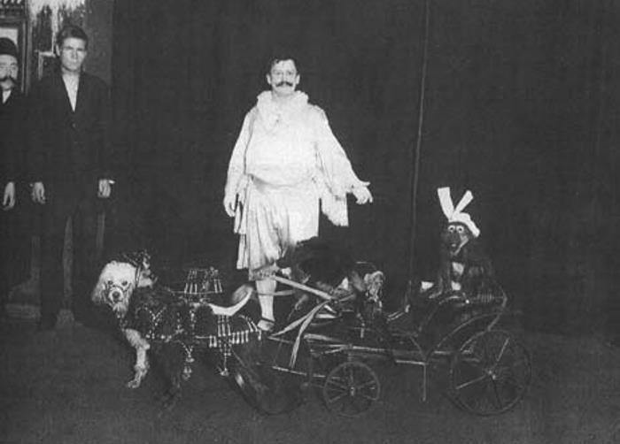 6 самых известных российских цирковых династий, которые покорили мир династия