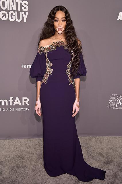 Ким и Кортни Кардашьян, Хайди Клум, Алессандра Амбросио и другие на гала-вечере amfAr в Нью-Йорке красная дорожка