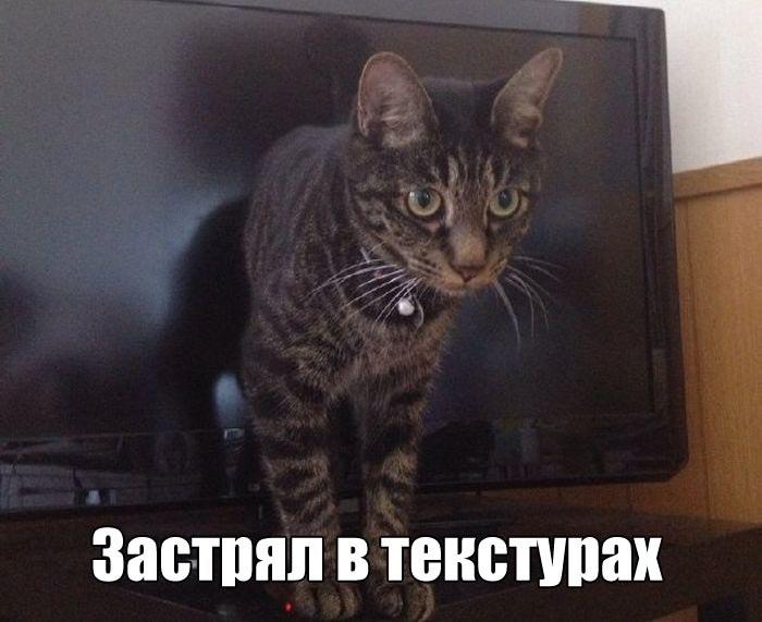 Подборка смешных картинок и забавных фото приколов с надписями из сети