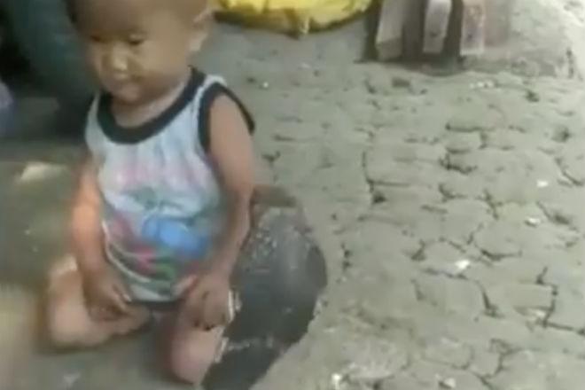 Двухлетний мальчик стал лучшим другом огромной змеи культура