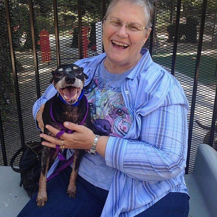 Она пришла в приют и попросила самую ненужную собаку истории из жизни