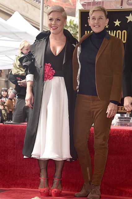 Пинк получила звезду на Аллее славы в Голливуде новости