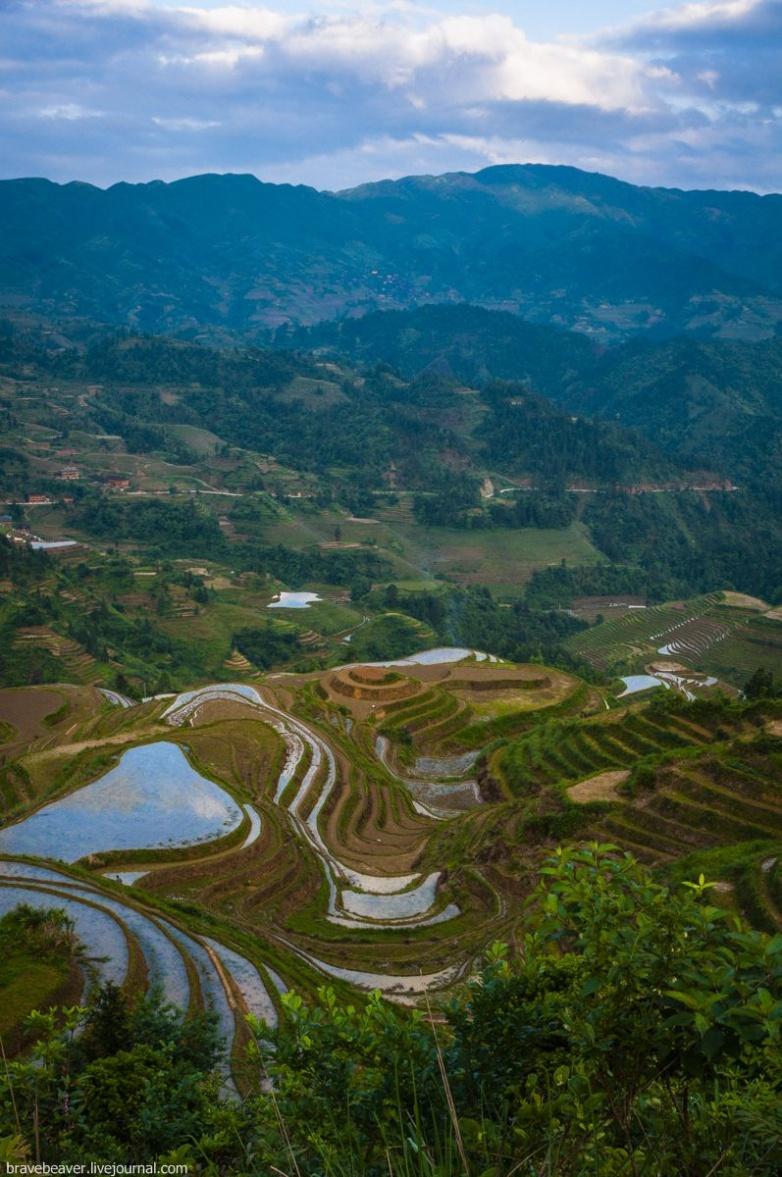 Рисовые террасы Лонгшеня